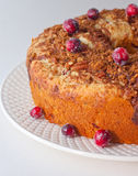 Cranberry coffeecake. Sidelit cranberry coffeecake on white china with whole cranberries around stock photos