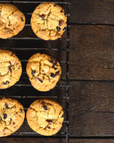Cranberry cookies Royalty Free Stock Photography