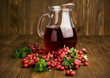 Cranberry cranberries i sok Obraz Stock