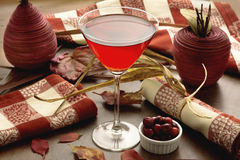 Cranberry Cranberry Cocktail with Autumn Theme Stock Images