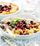 Cranberry crumble Royalty Free Stock Photo