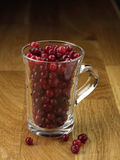 Cranberry cup Stock Photo