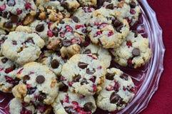 Cranberry Czekoladowego układu scalonego ciastka Fotografia Royalty Free