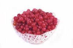 cranberry czerwień Zdjęcia Royalty Free