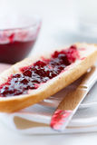 cranberry dżem obrazy stock