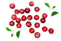 Cranberry decorated with green leaves isolated on white background closeup top view.  stock photos