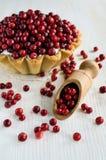 Cranberry dessert Royalty Free Stock Image