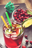 Cranberry drink with lime and mint Stock Images