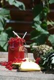 Cranberry fresh juice Royalty Free Stock Photos
