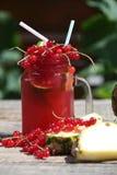 Cranberry fresh juice Royalty Free Stock Images