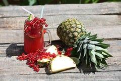 Cranberry fresh juice Royalty Free Stock Image