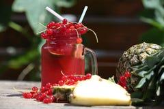 Cranberry fresh juice Royalty Free Stock Photography