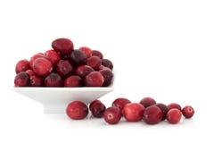 Cranberry Fruit Stock Photo