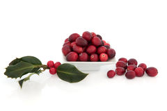Cranberry Fruit and Holly Stock Photos