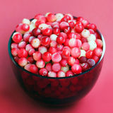 Cranberry in glass bowl Stock Images