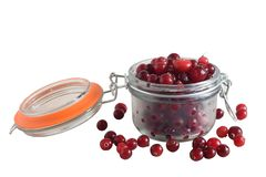 Cranberry in glass jar isolated on white background stock image
