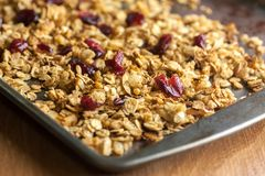 Cranberry Granola. Fresh Cranberry Granola with almonds and dried fruit on metal tray and wooden counter top Royalty Free Stock Photo