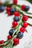 Cranberry i czarna jagoda na boże narodzenie torcie Zdjęcie Royalty Free