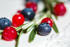 Cranberry i czarna jagoda na boże narodzenie torcie Fotografia Royalty Free