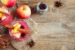 Cranberry i jabłczany cydr obrazy stock