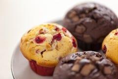 Cranberry i kopia czekoladowego układu scalonego muffins obrazy royalty free