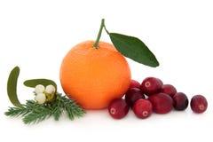 Cranberry i pomarańcze owoc zdjęcia stock