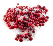 Cranberry isolated over white. Background Stock Photos