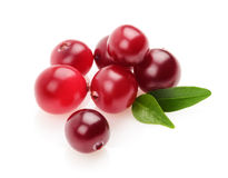 Cranberry isolated Stock Photos