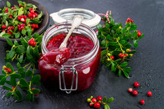 Cranberry jam Stock Photography