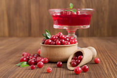 Cranberry jelly dessert Stock Photography