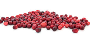 Cranberry Jewels Royalty Free Stock Image