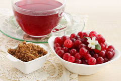 Cranberry juice and brown sugar Stock Image