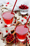 Cranberry juice or drink and funny cookies shape santa, healthy Stock Images