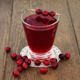 Cranberry Juice Drink Royalty Free Stock Photography