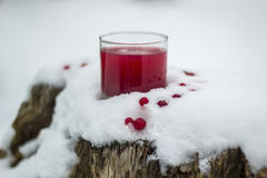 Cranberry juice Royalty Free Stock Image