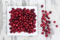 Cranberry klejnoty Zdjęcia Stock