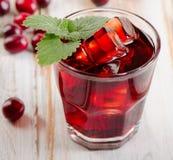 Cranberry koktajl zdjęcie royalty free