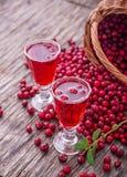 Cranberry koktajl obrazy stock