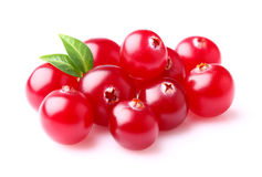 Cranberry with leaf Royalty Free Stock Photography