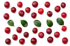 Cranberry with leaves isolated on white. With clipping path. Full depth of field. royalty free stock photos
