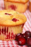 Cranberry Lemon Muffin With Berries Royalty Free Stock Photos