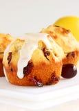 Cranberry lemon muffins Stock Photography