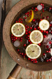 Cranberry lemon punch Stock Images