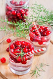 Cranberry lemonade. Homemade cranberry lemonade with fresh rosemary. Selective focus Royalty Free Stock Photos