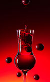 Cranberry liquor Royalty Free Stock Photo