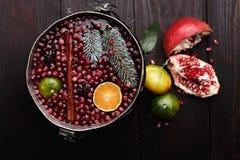 Cranberry mandarin mulled wine Stock Image