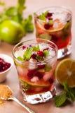 Cranberry mojito Zdjęcie Royalty Free