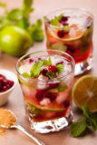 Cranberry mojito Royalty Free Stock Photo
