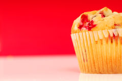 Cranberry muffin Royalty Free Stock Photography