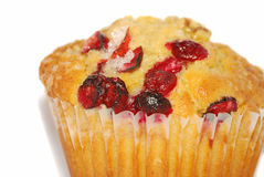 Cranberry muffin close-up Stock Photography